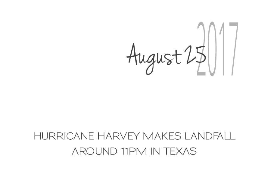 Volunteering in Hurricane Harvey Animal Rescue -Slide02