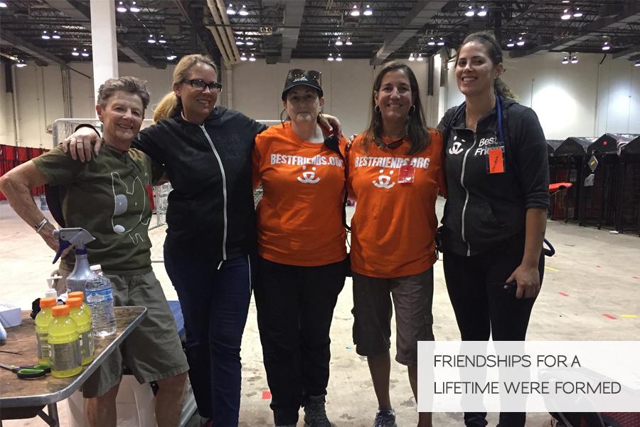 Volunteering in Hurricane Harvey Animal Rescue -Slide35